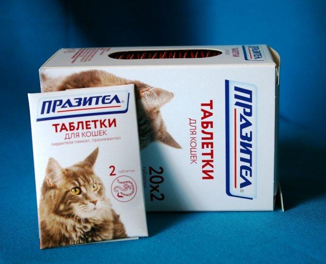 Празицид как давать кошке