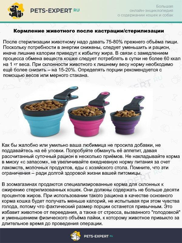 Предупреждение лишнего веса для кастрированных или стерилизованных питомцев