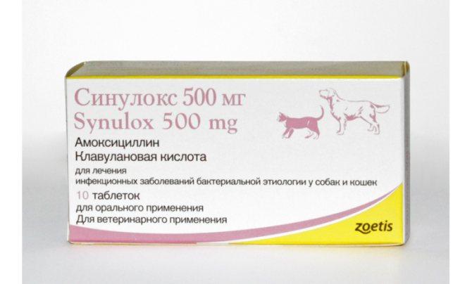 Преимущества антибиотика