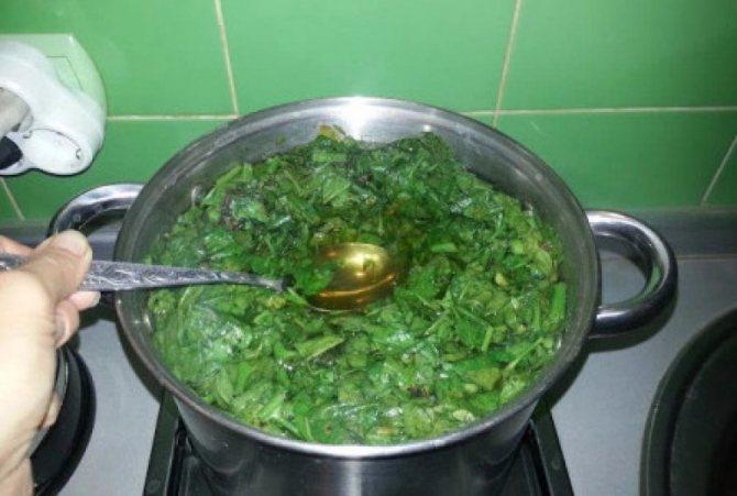 Приготовление отвара из томатной ботвы