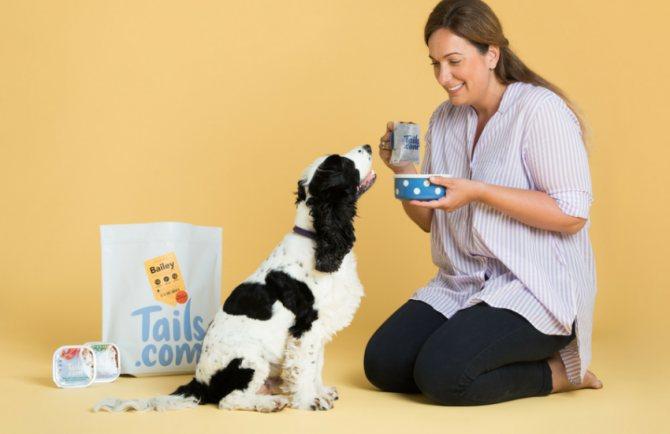Расчет корма для собак на 1 порцию