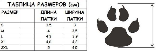 Размер лапы
