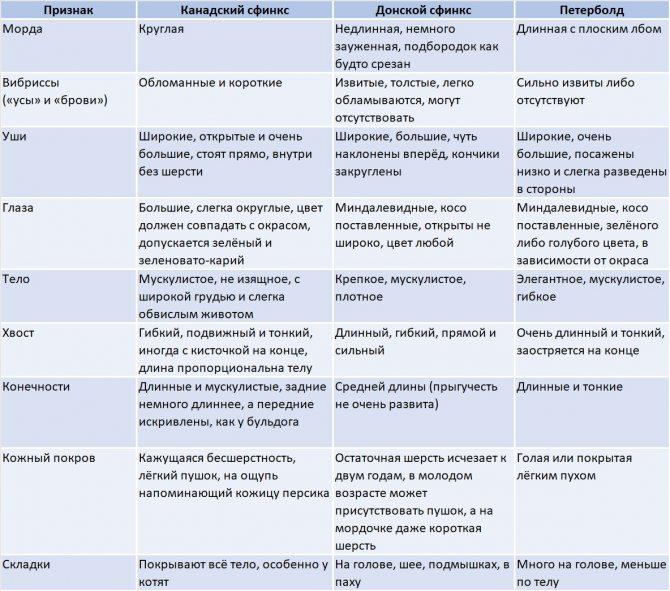 разновидности породы сфинкс
