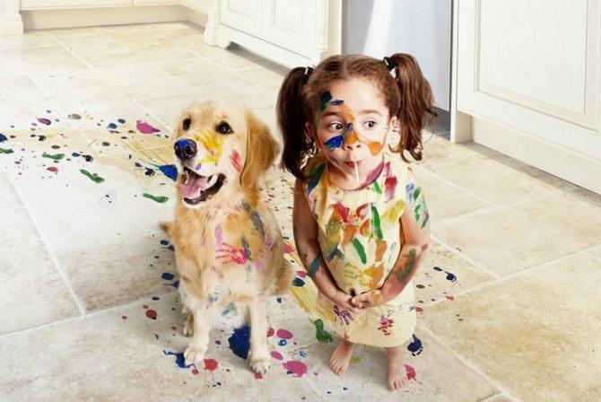 Ребенок и собака все в краске