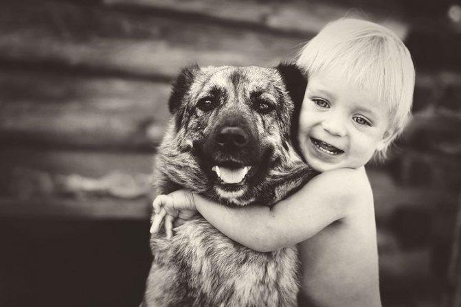 Ребенок обнимает собаку