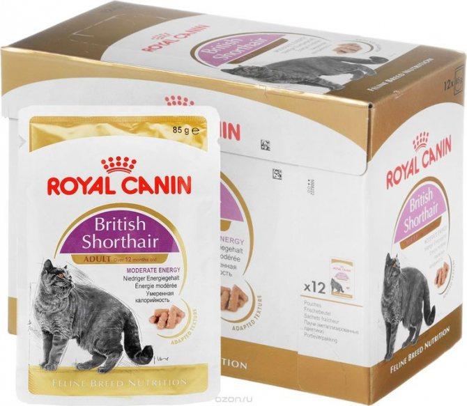 Royal canin для кошек