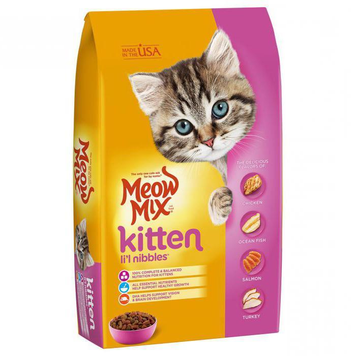 с какого возраста котятам дают сухой корм отзывы