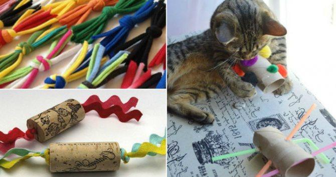 Самодельные игрушки для кошки из подручных материалов