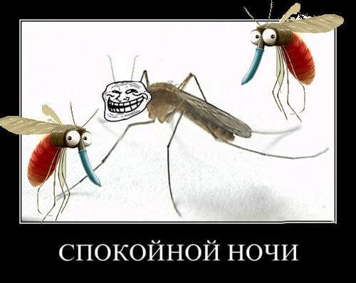 Самое эффективное средство от комаров в спальне