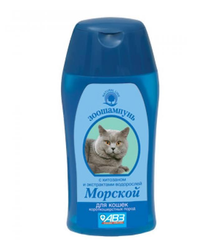 Шампунь для короткошерстных котов.