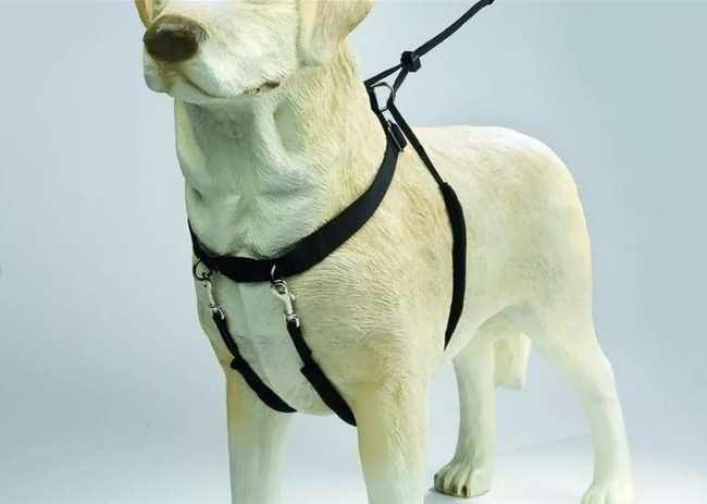 шлейка для собаки крупной породы