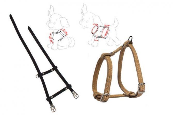Шлейка для собаки своими руками пошаговая инструкция
