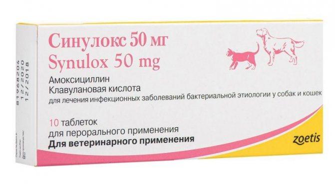 Синулокс 50 мг