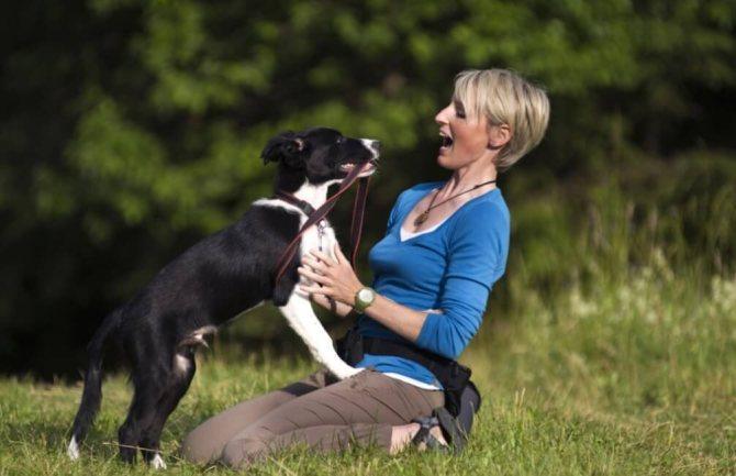 Слишком общительный пес способен накинуться на любого человека в парке