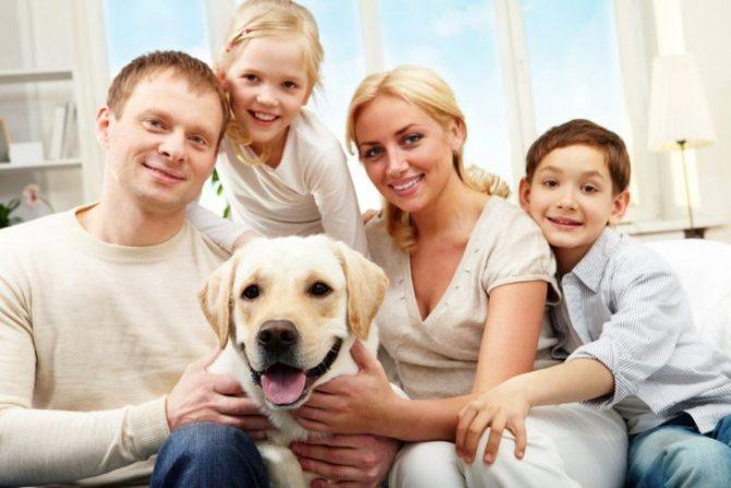 Собака в семье
