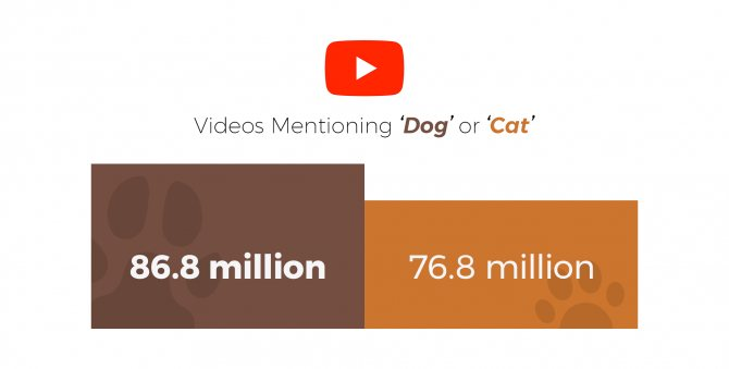 собаки против котов