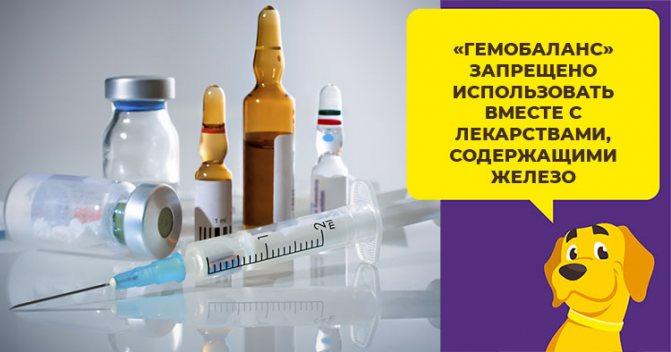 Состав и правила применения препарата Гемобаланс, расчет дозировки для собаки
