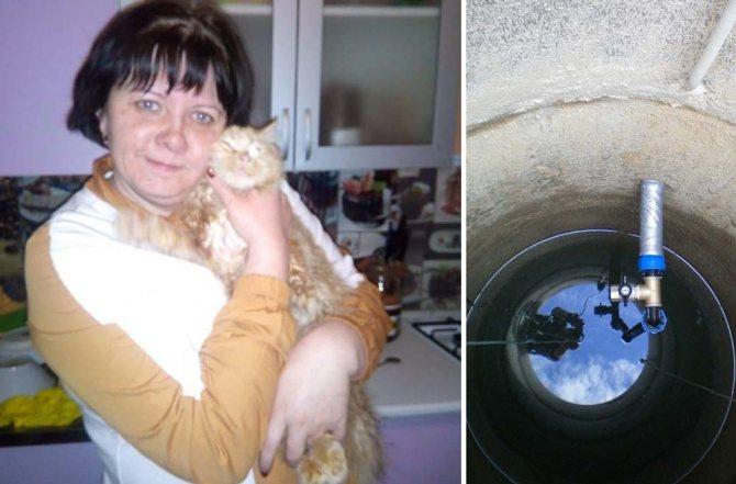 Спасатели Новороссийска спасли кота, который едва не погиб в колодце