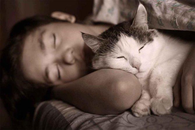 Спящий человек с котом