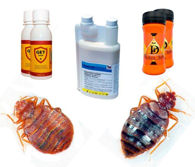 Опасны ли для человека средства для уничтожения клопов и можно ли применять такие препараты в квартире