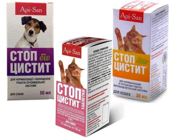 Стоп Цистит для кошек и котов: инструкция по применению таблеток и суспензий, отзывы