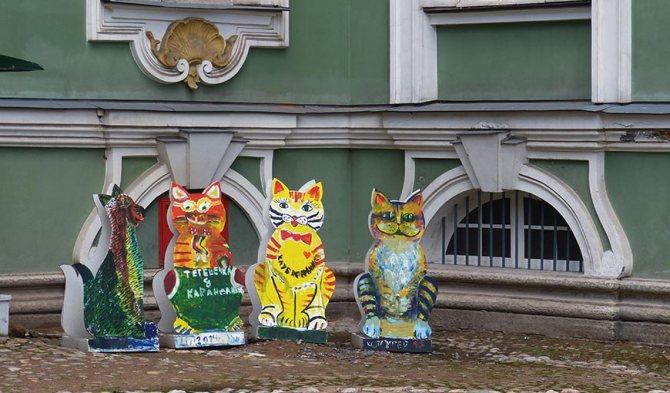 Странные коты Санкт-Петербурга