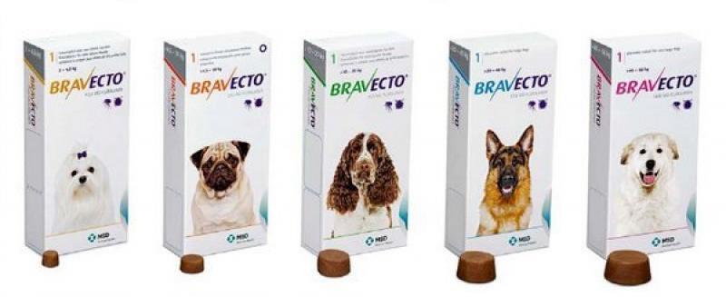 Таблетки Бравеко для профилактики пироплазмоза у собаки