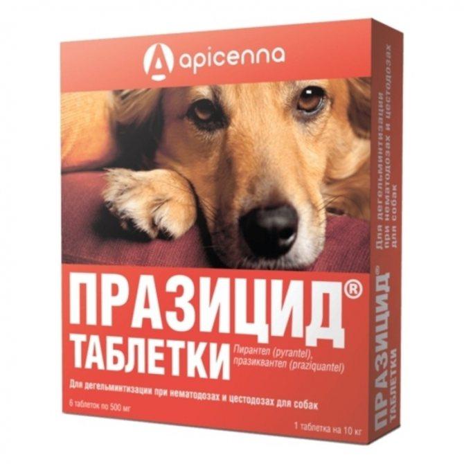 Таблетки для дегельминтизации собак
