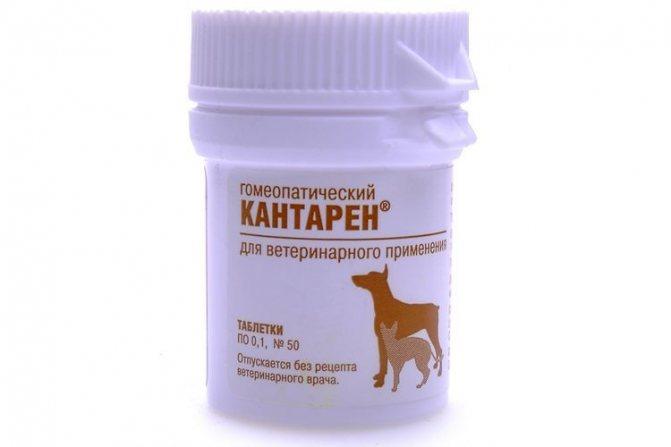 Таблетки Кантарен для собак