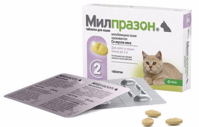 Таблетки Милпразон для кошек