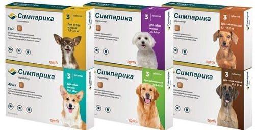Таблетки Симпарика для лечения генерализованного демодекоза у щенков и собак