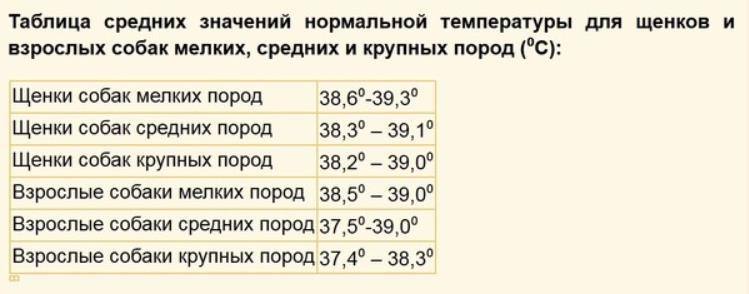 таблица показателей нормальной температуры у собаки