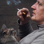 у кота опухла щека под глазом