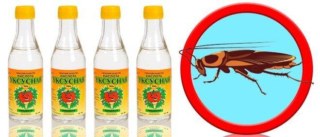 Уксус от тараканов