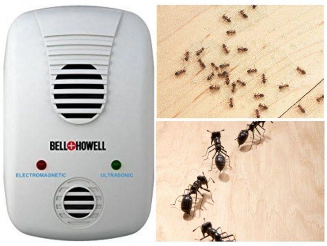 Ультразвуковой отпугиватель для муравьев