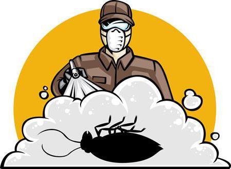 уничтожение тараканов горячим туманом отзывы