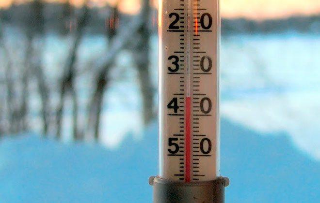 Уничтожение тараканов холодом – низкой температурой