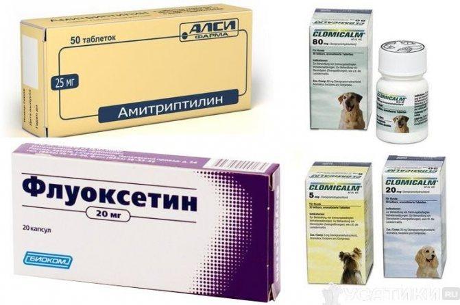 Успокоительные препараты для собак