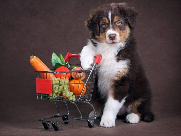 В овощах содержится много незаменимых питательных веществ