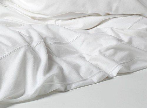 Важно помнить, что в постели помимо блох можно обнаружить и других паразитов...