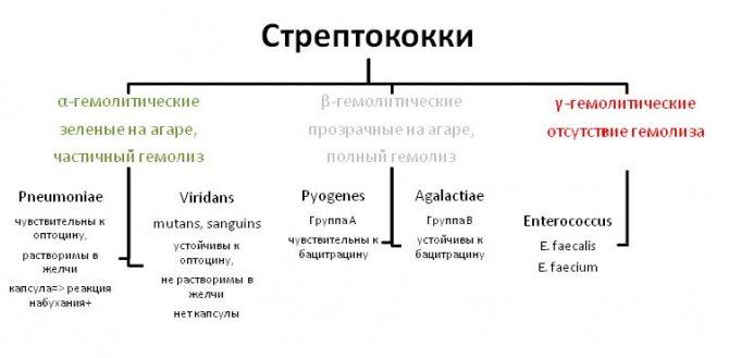 Виды патогенов