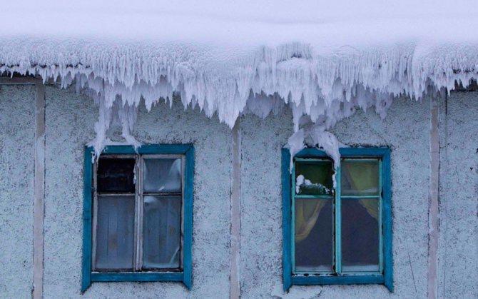 вымораживание дома от блох