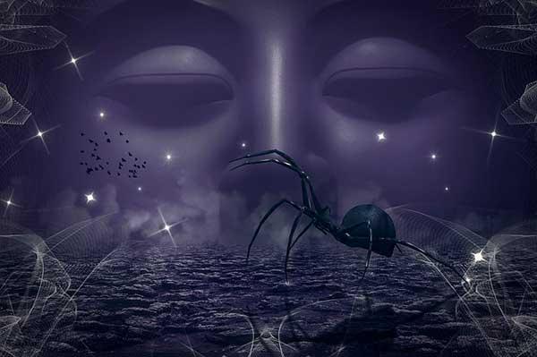 загадочный паук