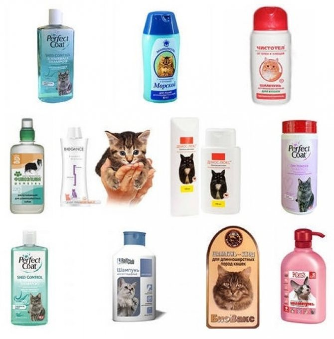 Жидкие шампуни для кошек.